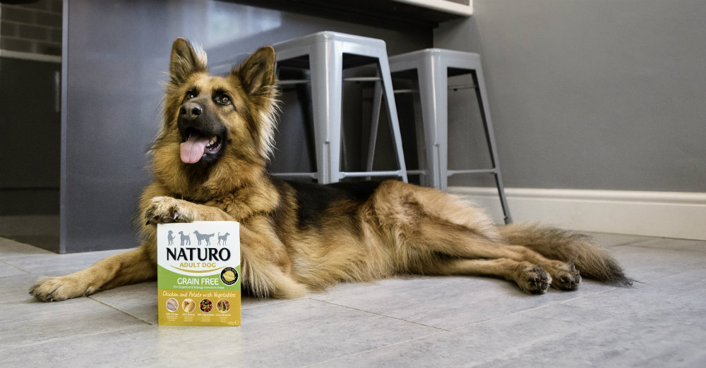 Naala Naturo Dog with pack