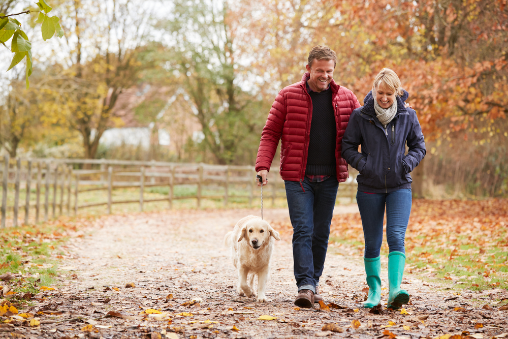 Dog walk with couple