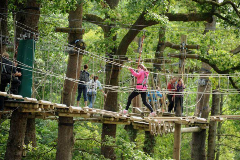 Brockhole Tree Top Nets